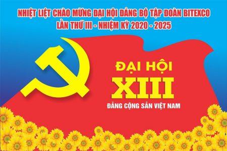 ĐẠI HỘI ĐẢNG BỘ BITEXCO LẦN THỨ III, NHIỆM KỲ 2020 – 2025